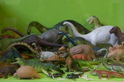shall we do with the plastic dinosaurs?