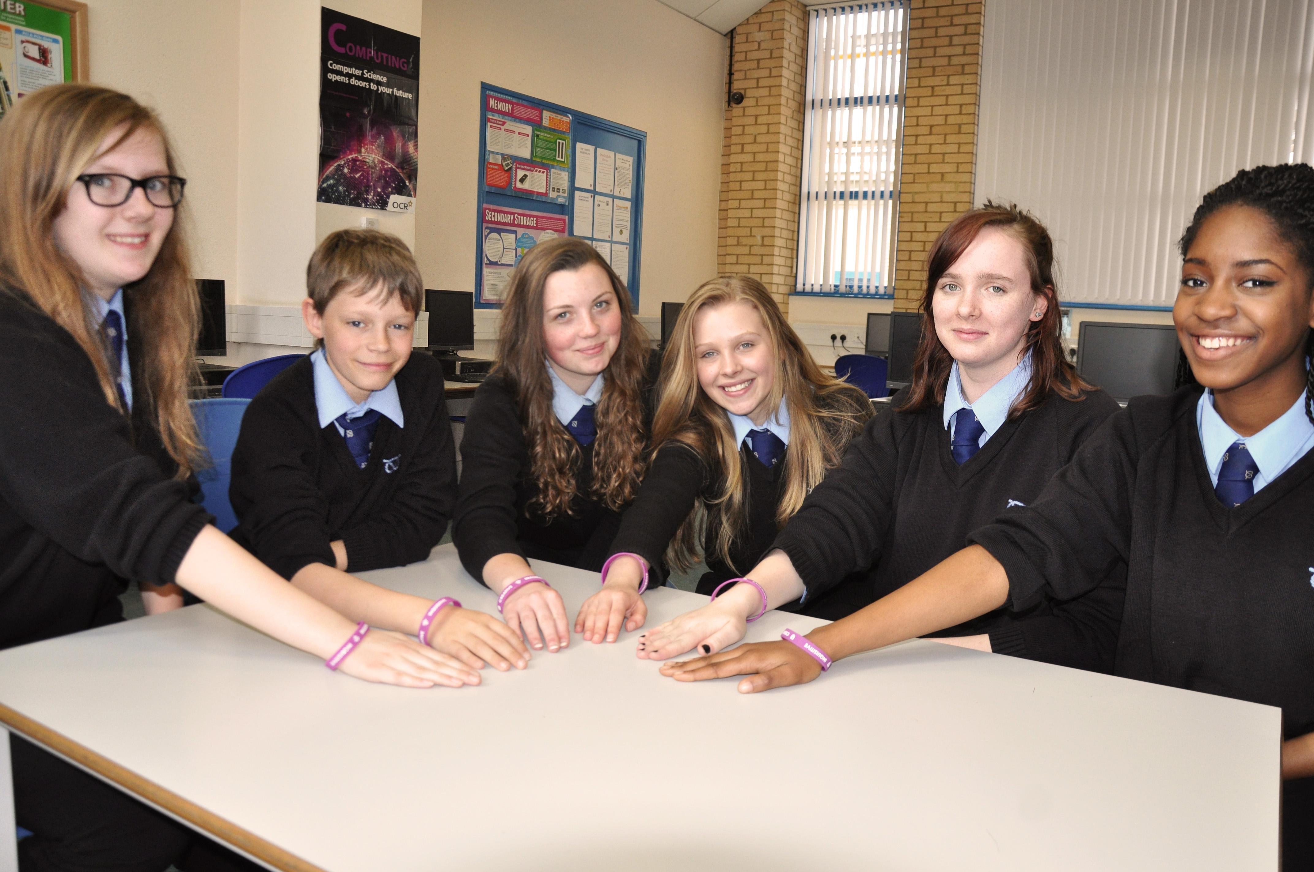 denbigh school design team