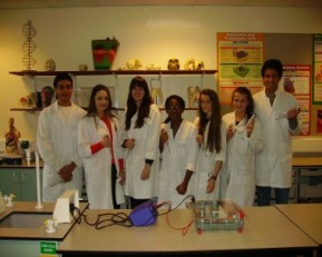 Students at East Norfolk 6th Form College starting their Lichen DNA Extraction