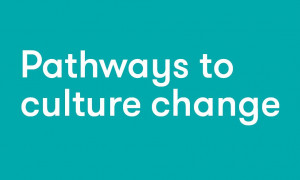 White text on teal background reading 'Pathways to culture change'